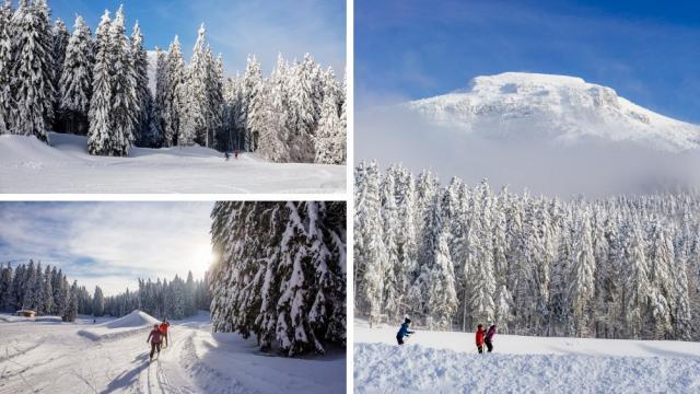 Ski De Fond Chartreuse Au Col De Porte