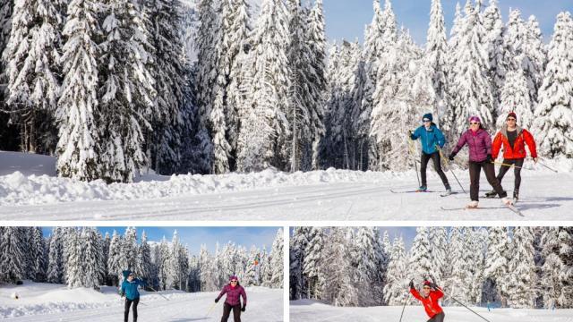 Course En Ski De Fond Chartreuse