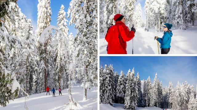 Ski De Fond Chartreuse Au Col De Porte, Entre Copains